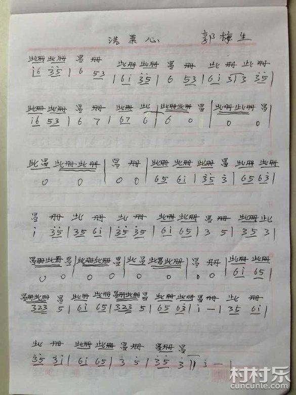 邵东花鼓戏音乐曲谱 74 洗菜心 一