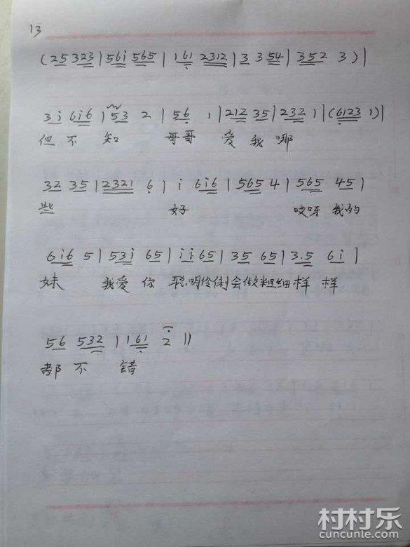邵东 邵阳 花鼓戏音乐曲谱 42 打鸟 全剧